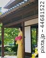 着物の女性 44681522