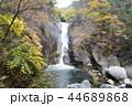 川 滝 昇仙峡の写真 44689868
