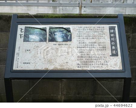 神田川の魚道 東京都 案内板 解説 44694622