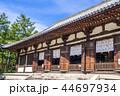 唐招提寺 寺 講堂の写真 44697934
