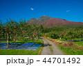岩木山 りんご 秋 44701492