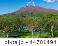 岩木山 りんご 秋 44701494