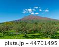 岩木山 りんご 秋 44701495