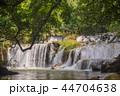 滝 水 自然の写真 44704638