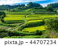 棚田 明日香村 風景の写真 44707234