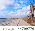 海岸 ビーチ 海の写真 44709779