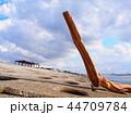 海岸 ビーチ 海の写真 44709784