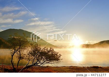 奥日光中禅寺湖千手ヶ浜の日の出 霧立つ湖面に男体山と湖畔の木 44711277