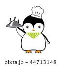 鳥 ぺんぎん ペンギンのイラスト 44713148