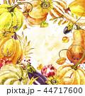 かぼちゃ カボチャ 南瓜のイラスト 44717600