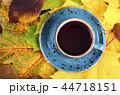 ティー あき 秋の写真 44718151