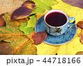 ティー あき 秋の写真 44718166