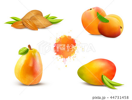 almonds, apricot, pear, mango, peach  44731458