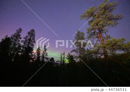 フィンランド サーリセルカのオーロラ 44736531