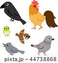 鳥 セット 鳥類のイラスト 44738868