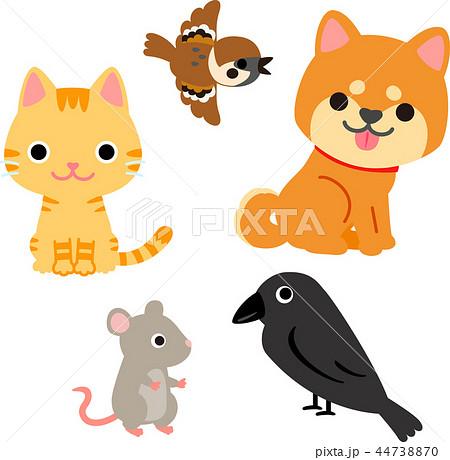 生活に身近な動物のイラストセット 44738870