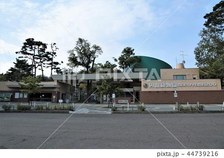札幌市円山動物園・正門 44739216