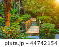 チャイナ 中国 公園の写真 44742154