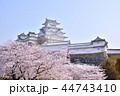 姫路城 天守閣 桜の写真 44743410