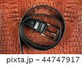 ベルト 皮 ワニの写真 44747917