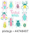 虫 ビートル 甲虫のイラスト 44748407