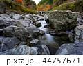 みたらい渓谷 渓谷 風景の写真 44757671