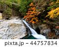 みたらい渓谷 渓谷 滝の写真 44757834