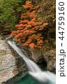 みたらい渓谷 渓谷 滝の写真 44759160