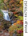 みたらい渓谷 渓谷 滝の写真 44759162