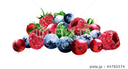 Raspberries, cranberries and blueberries on white background. Watercolor illustration 44760374