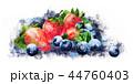 ベリー ブルーベリー いちごのイラスト 44760403