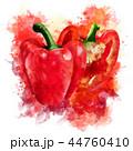 野菜 赤い ピーマンのイラスト 44760410