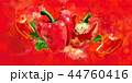 野菜 赤い ピーマンのイラスト 44760416