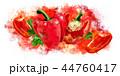 野菜 赤い ピーマンのイラスト 44760417