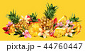 くだもの フルーツ 実のイラスト 44760447
