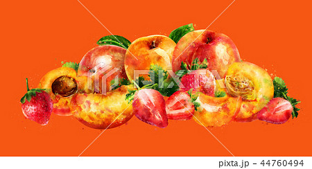 Apricot, peach and strawberry on orange background. Watercolor illustration 44760494