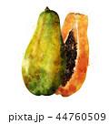 くだもの フルーツ 実のイラスト 44760509