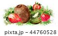 キウイ キウィ キーウィのイラスト 44760528