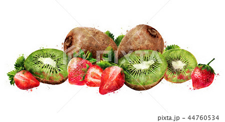 Strawberry and kiwi on white background. Watercolor illustration 44760534