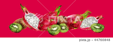Dragon fruit and kiwi on red background. Watercolor illustration 44760848