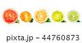 オレンジ オレンジ色 橙のイラスト 44760873