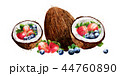 ココナツ いちご イチゴのイラスト 44760890