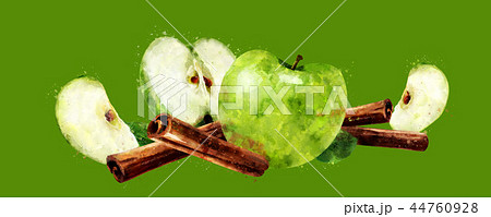 Watercolor cinnamon and green apples on green background 44760928