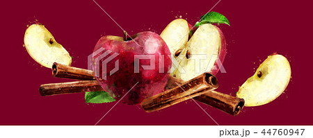Watercolor cinnamon and red apples on red background 44760947