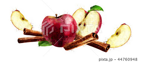 Watercolor cinnamon and red apples on white background 44760948