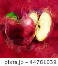 くだもの フルーツ 実のイラスト 44761039