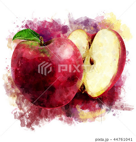 Red Apple on white background. Watercolor illustration 44761041