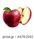 くだもの フルーツ 実のイラスト 44761045
