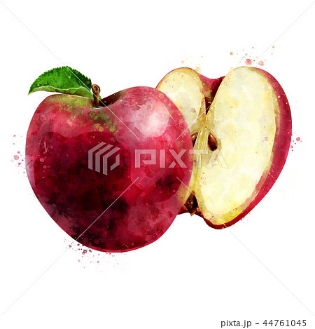 Red Apple on white background. Watercolor illustration 44761045