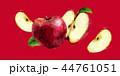 くだもの フルーツ 実のイラスト 44761051